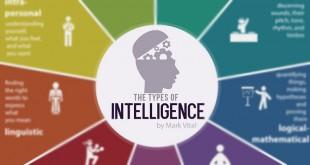Съществуват 9 типа интелигентност. Ти кои притежаваш? (Инфографика)